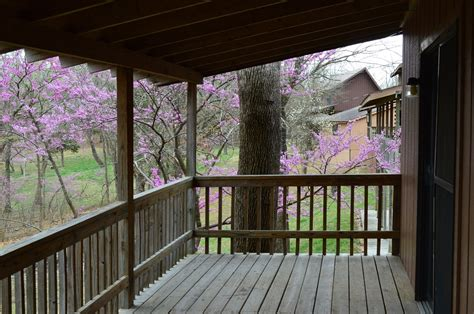 log cabins table rock lake relaxing at bar m lake resort near branson and blue