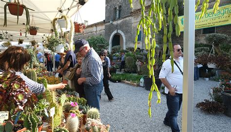 castellaro lagusello festa dei fiori i fiori di castellaro lagusello terre dell alto mantovano