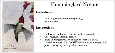 what is the recipe for hummingbird food 28 images