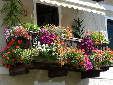 immagini di balconi fioriti a caltanissetta primo concorso quot balconi fioriti