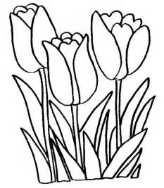large printable tulips clipart best