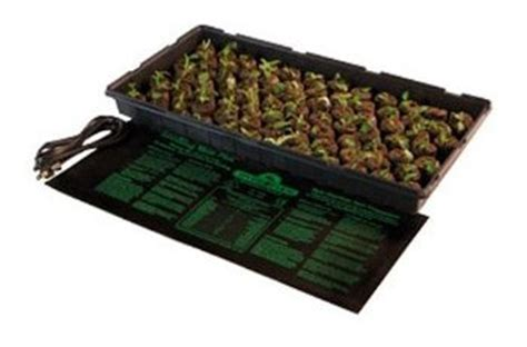 Germination Mat by Using A Seedling Heat Mat For Germination Of Seeds