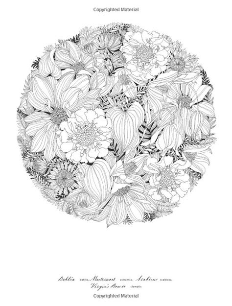 floribunda a flower colouring 1780677766 floribunda a flower coloring book leila duly 9781780677682 amazonsmile books