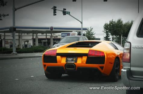 Lamborghini Of Bellevue Lamborghini Murcielago Spotted In Bellevue Washington On