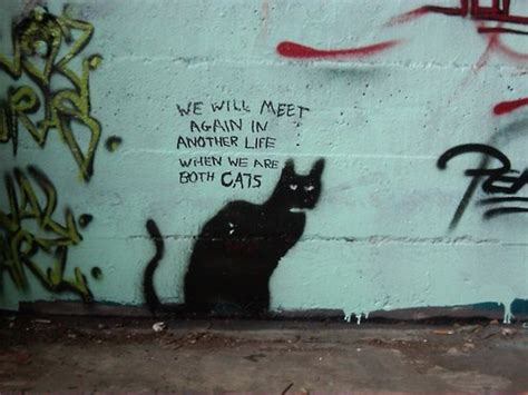 graffiti when we are both cats cats black pinterest