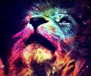 imagenes de leones swag galaxy swag by moilinoo on whi