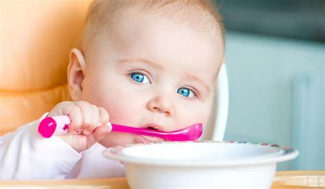 alimentazione 8 mesi svezzamento neonati e bambini bimbisani e belli