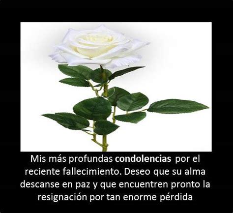 imagenes de rosas blancas con mensajes hermosas im 225 genes de rosas blancas con frases de luto y