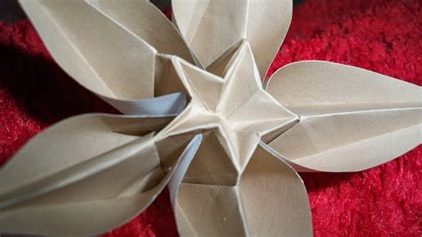 Carambola Origami Flowers - origami carambola flower up by zanadov on deviantart