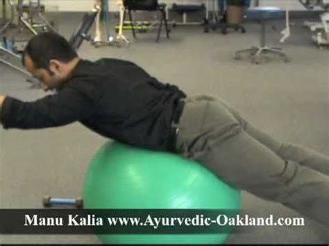 lower back exercises for stabilization these are physical therapy rehab exercises for