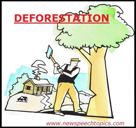 Causes And Effect Of Deforestation Essay by Essay On Causes And Effects Of Deforestation