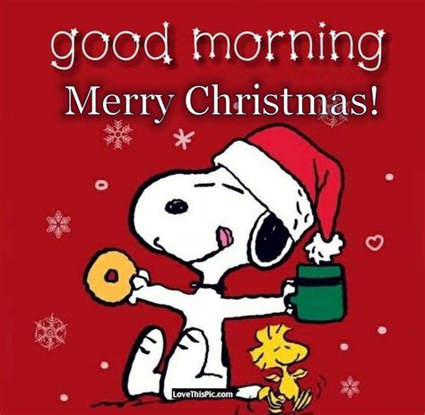 snoopy good morning merry christmas pictures   images  facebook tumblr pinterest