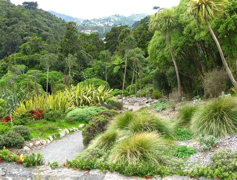 new botanical gardens botanic gardens wellington new zealand photograph by