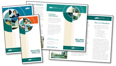 brochure template free download microsoft word csoforum