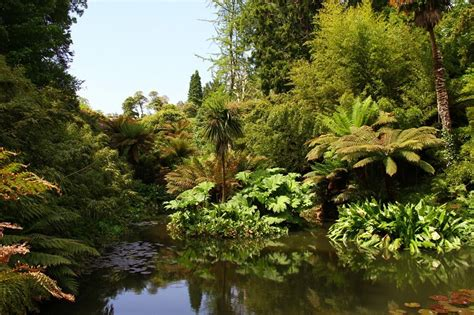 Lost Gardens Of Heligan by The Lost Gardens Of Heligan Vouchers Offers And Deals