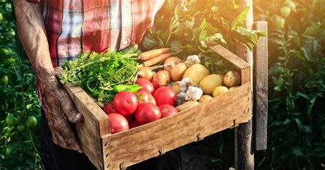 uncovering  fiction  farm  table food propublica