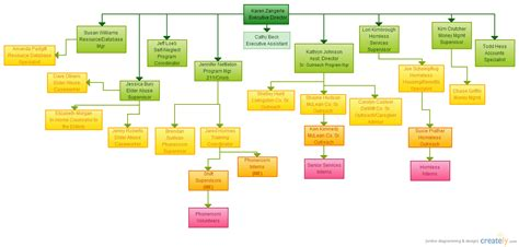career flowchart career path flowchart creately