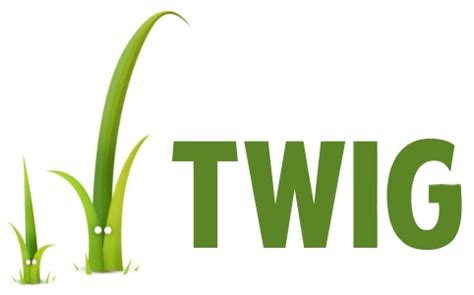 discover the php template engine twig