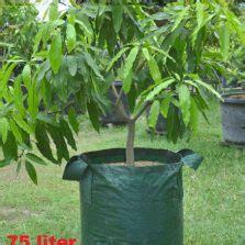 Jual Wall Planter Bag wall planter bag 6 kantong bibitbunga
