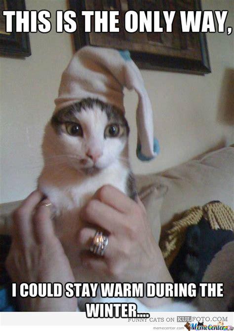 Soft Kitty Meme - soft kitty memes image memes at relatably com