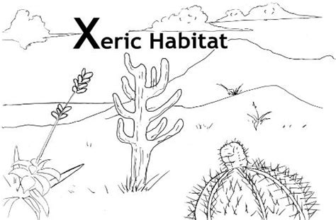 Animal Habitat Coloring Pages For Kids Freecoloring4u Com Animal Habitat Coloring Pages