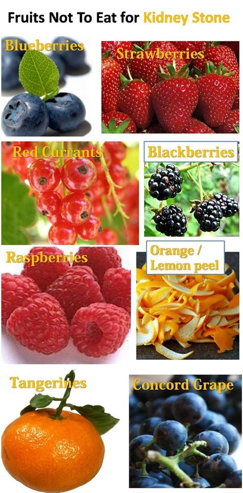 Kidney Detox Fruits by 1000 Ideas About Kidney Stones On