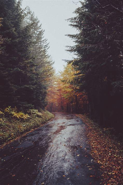 imagenes de paisajes sad elenamorelli green yellow orange red paisajes