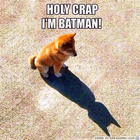 batman puppy holy crap i m batman