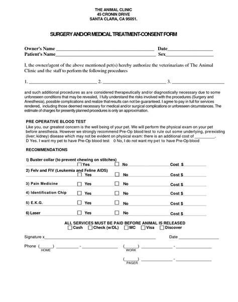 treatment consent form template 15 best images about my work on cats