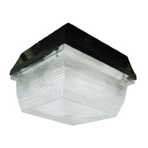 light canopy induction canopy light