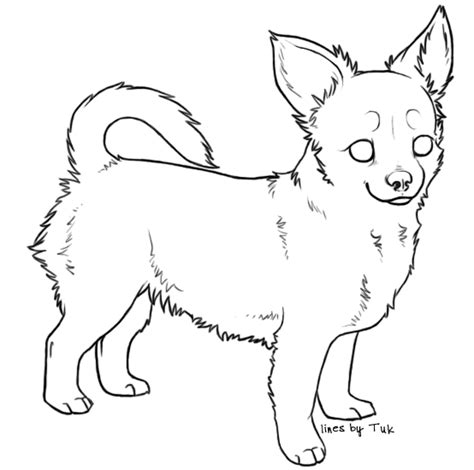 Chihuahua Colouring Pages Chihuahua Pencil Coloring Pages by Chihuahua Colouring Pages
