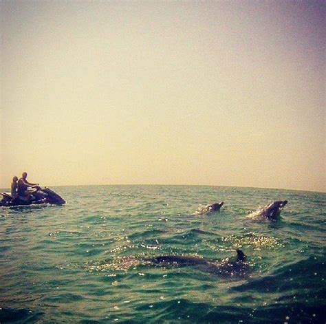 myrtle beach jet boat rentals 521 best travel images on pinterest travel advice