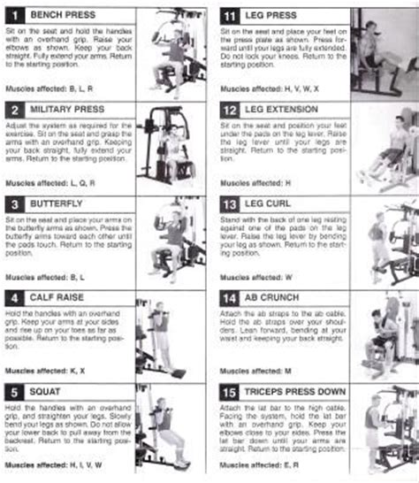 25 best ideas about exercise chart on