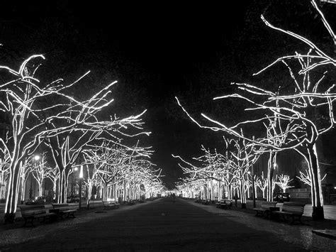 imagenes en blanco y negro navidad 14 fotoconsejos para retratar esta navidad