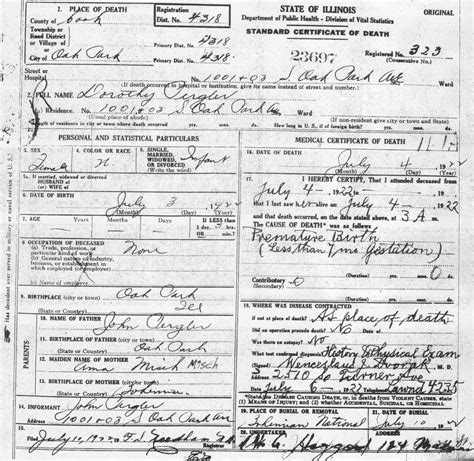 Cook County Birth Records Pergler Family History Dorothy Pergler 1922