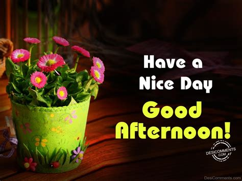 a day afternoon afternoon pictures images graphics for whatsapp page 9