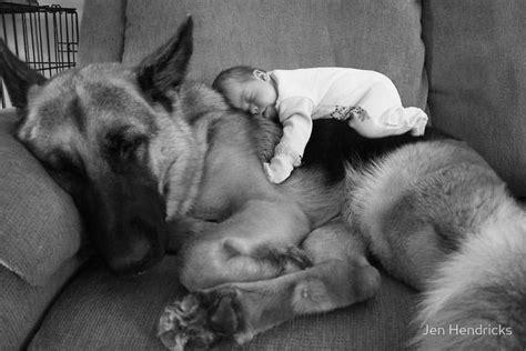 dogs best friend s best friend