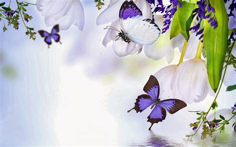 witte achtergrond met 3d pingun met zonnebril en een ijsje 26 prachtige lente achtergronden mooie leuke