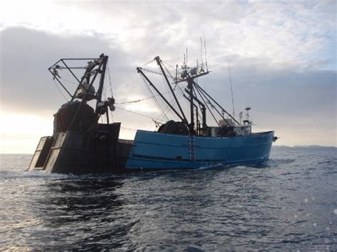 fishing boat engineer jobs fishermen held over killing of captain engineer off south