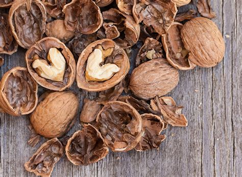 healthy fats besides nuts 20 healthy fats to make you thin eat this not that
