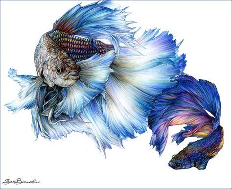 disegni artistici colorati cerca con
