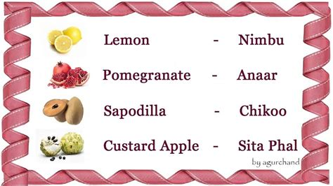 l fruit name fruits names in and urdu www pixshark