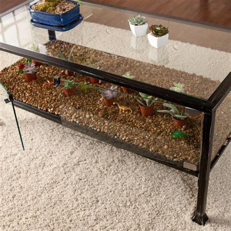 terrarium table amazon com terrarium display cocktail table kitchen dining