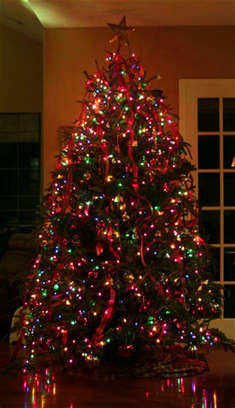my christmas tree my favorite christmas tree mark d roberts