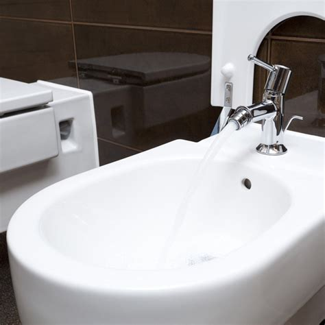 What Is Bidet by What Is A Bidet The Family Handyman