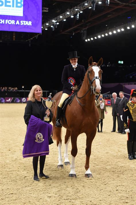 Uk Search For New Class And New Venues For Seib Search For A 2017 The Of The Year Show
