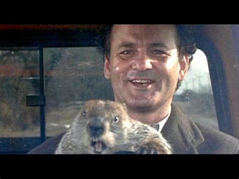 groundhog day analysis groundhog day analysis 28 images free groundhog day