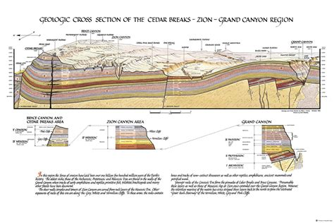 geologic cross sections geologic cross section poster zion natl park forever project