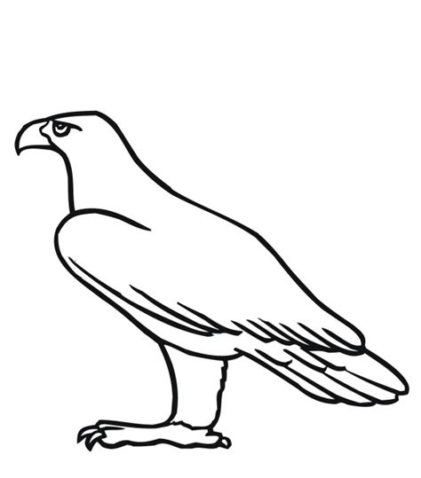 coloring pages of birds flying free coloring pages of a flying bird