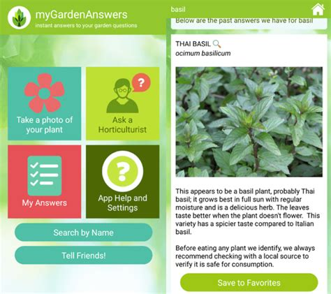 Garden Answers Plant Id 6 Best Plant Identifying Apps For Iphone And Android